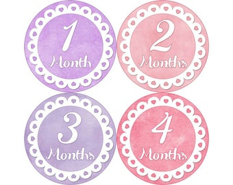 Baby Month Stickers, Monthly Baby Stickers, Monthly Photo Stickers, Girls First Year Photo Props, Baby Shower Gift, Pink Purple (G181)