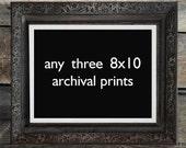 SALE : Any Three 8x10 Wild Pulp Archival Prints - Woodland Theme Wall Art, Lodge, Nursery, Home Decor