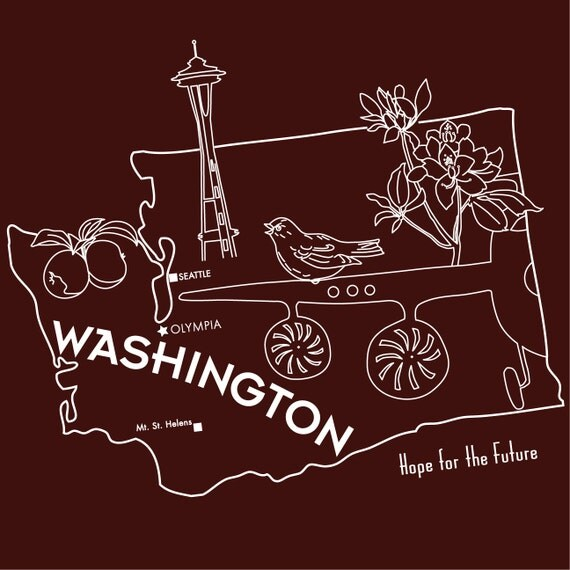WASHINGTON / Embroidery Pattern / Digital PDF / State Pillow / Stitch & Color Guides