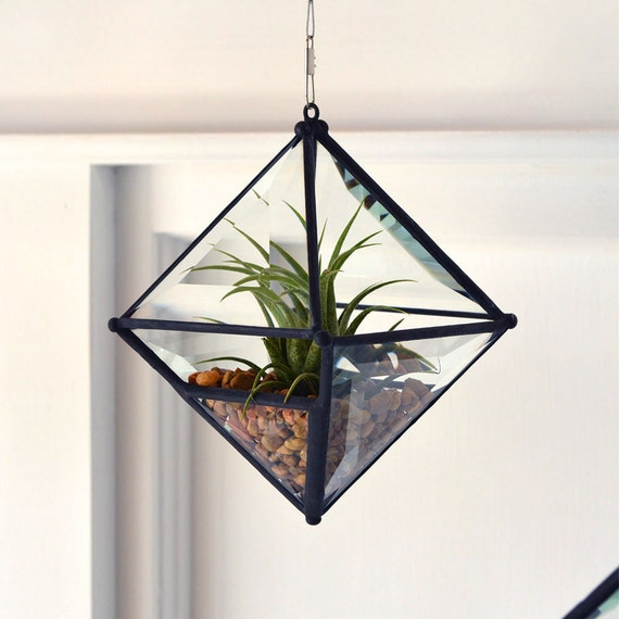 Pyramid Beveled Glass Orb Air Plant Planter with Bevel Accent.