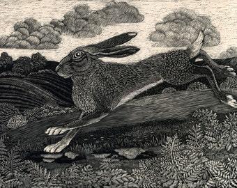 Running Hare Card from original scraperboard design