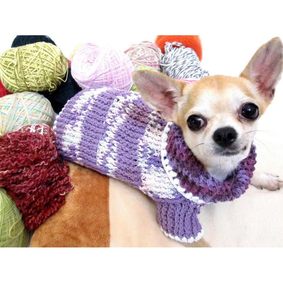 Knitting Pattern Chihuahua Jumper : Warm Teacup Chihuahua Sweater Knit XXS Dog Clothing Cute