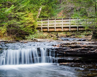 Rustic Forest Bridge Print, Woodland Waterfall Photography, Green Wall Art, Photography by CT Costa, Available in various sizes