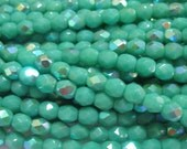Czech Glass Faceted Fire Polish Beads 4mm Round Turquoise AB (50)