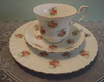 Vintage Royal Albert Forget Me Not Rose Teacup & Plate - Royal Albert Teacup and Plate - Royal Albert Roses Teacup - Vintage Royal Albert