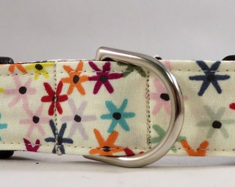 Dog Collar, Martingale Collar, Cat Collar - All Sizes -  Sprinkles