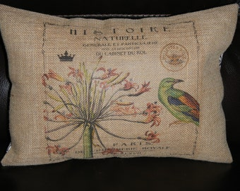 Bird Paris Burlap Pillow, Shabby Chic, INSERT INCLUDED