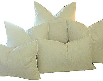 Pillow Inserts - 22X22 FEATHER DOWN Pillow Inserts - Indoor Pillow Insert -  95 Feather - 5 Down -