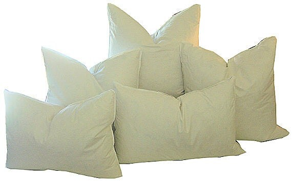 Pillow Inserts 40X40 FEATHER DOWN Pillow Inserts Indoor Pillow Cool Cheap Down Pillow Inserts