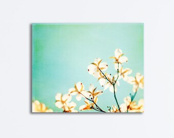 "Dogwood Canvas Art - light blue aqua teal pale turquoise yellow brown white floral branch photograpy spring wall print, ""Blossoms Adrift"""