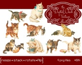 Digital Clipart, instant download, Vintage Cat and Kitten orange tabby white kitty angora tiger stripe calico--Clip Art--9 PNG files  684