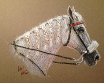 original equine portrait