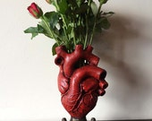 Anatomical Heart Vase, Red Finish