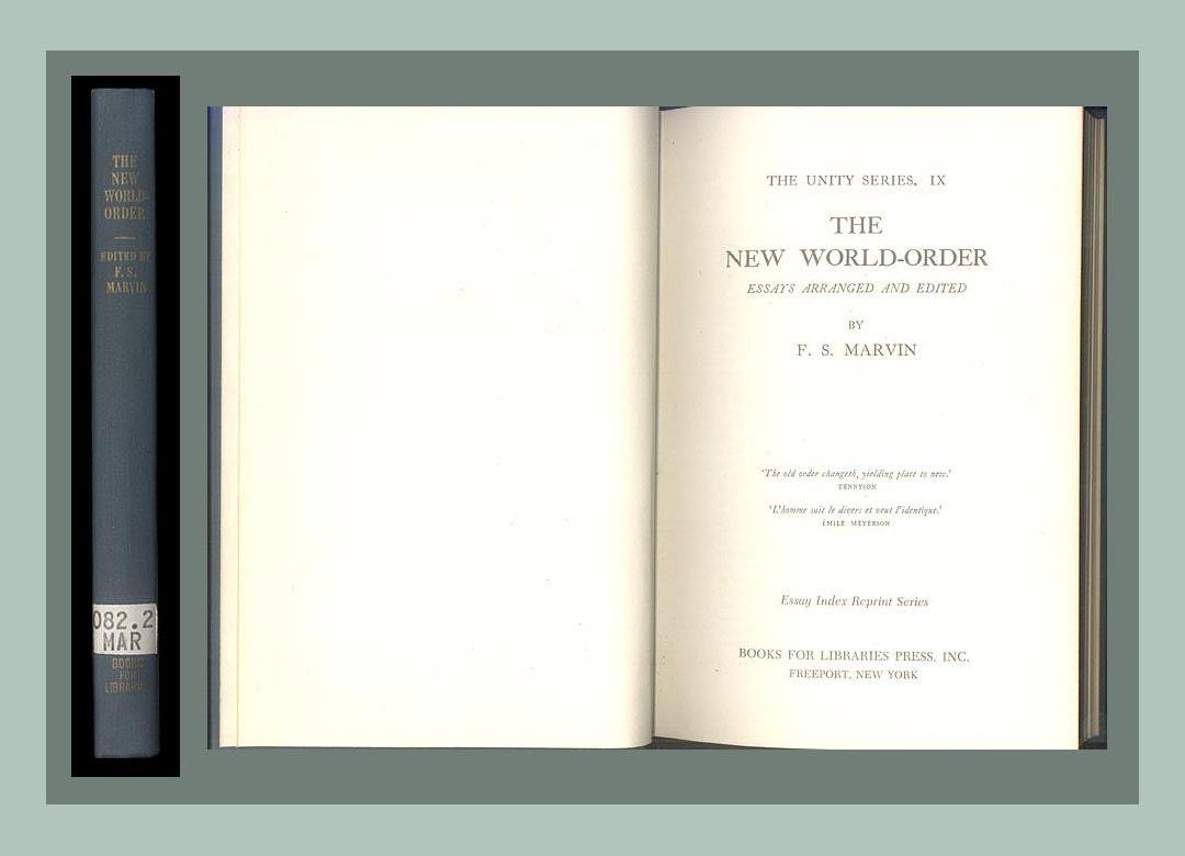 new world order argumentative essay