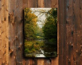 Autumn - Autumn decor - Autumn photography - Autumn leaves photography - Fall decor - Autumn decor - Nature photography - Autumn leaves