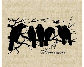Black crows Nevermore Halloween Instant digital download image for iron on fabric burlap transfer decoupage paper pillow tag. Item No. 2125