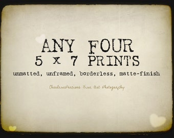 """10% OFF YOUR ORDER of any four 5 x 7"""" prints!"""