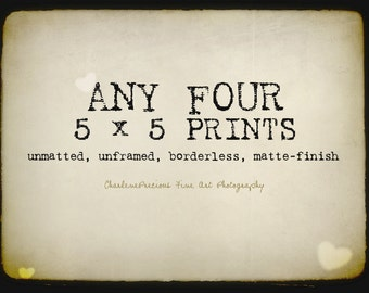 """10% OFF YOUR ORDER of any four 5 x 5"""" prints!"""