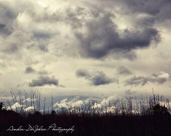 Stormy Field - Michigan Landscape Photography - Fine Art Photography