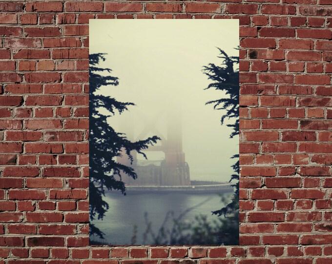 Detail of Golden Gate Bridge, Footing Through the Trees, Wanderlust San Francisco Travel 8x12  10x15 12x18 16x24 Fine Art Photograph