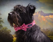 Delaney Dog Collar and Bow set, Valentine's Day, pink and red hearts