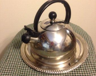 Vintage Stainless Steel Tea Kettle Bird Feeder (FREE Shipping)