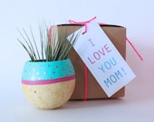 Gift Wrap Add On - Make gift giving easier on yourself!