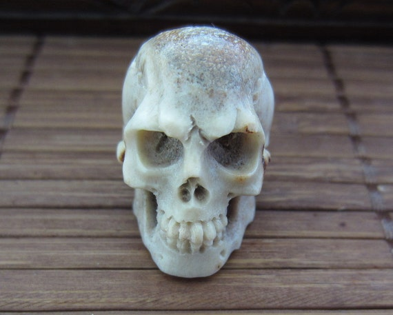 Amazing deep relief carved deer antler skull bone by cabcabana