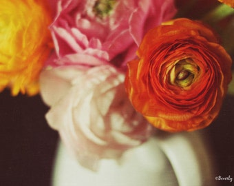 ranunculus, floral, flowers, spring, fine art photography