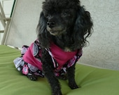 Dog Clothes, Puppy Dress, An Adorable Puppy Dress in Hot Pink trimmed in a Floral Print with Butterfly Sleeves just for her.