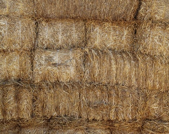 Hay Bales - Exclusive - Vinyl Photography  Backdrop Photo Prop