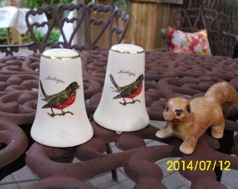 Vintage Salt & Pepper Shakers-Michigan-State Bird-Robin Red Breast-Gold Trim