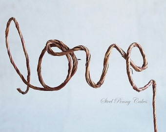 Rustic Wire Love Boho Wedding Cake Topper (Ready to ship!)