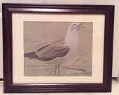 Seagull at Beach on Grey Paper Framed Original Drawing - Last day at this SALE price