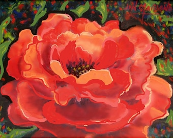 """Fine Art Giclee Print, Rose, Open Rose, Pastel Painting By Jan Maitland, Signed Archival Print, Floral, Image 5"""" X 7"""""""
