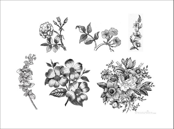 vintage black and white floral 6 temporary tattoos by ...  vintage black a...
