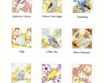Illustrator atelier emi  Bird Budgie Budgerigar Parakeet Stickers (emi-318)