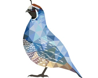 geometric quail - limited edition 8x10 print