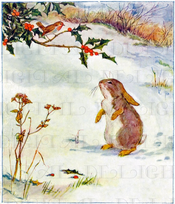 Adorable Bunny Rabbit And Robin Storybook Rabbit Vintage