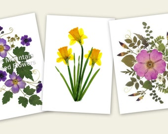 Pressed Flower Cards - set of 6 notecards - Blank stationery - #064