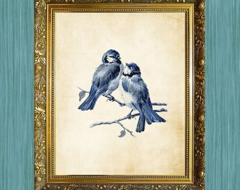 Blue Bird Print Natural History Art Print 8 x 10 Blue Bird Art Print Two Blue Birds