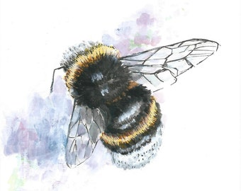 A5 Bumble Bee Illustration PRINT