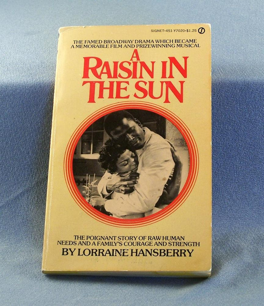 1958 a raisin in the sun paper back book by siggisvintageattic