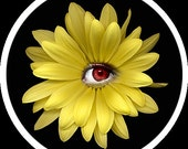 Glass Cabochon - Yellow Flower with Eye Detail