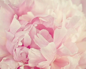 Pink Peony Art Print, Pastel Spring Flowers, Flower Photography, Pink Wall Art, Spring Home Decor, Garden Wall Art, Botnical Photography