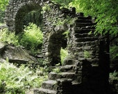Photography, castle wall in the forest, high gloss, premium paper, signed