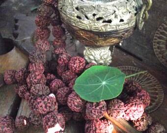 Large Rudraksha Mala Beads (18 to 21mm). Hindu Prayer Beads.Natural Seed Beads Jewelry. 27 beads