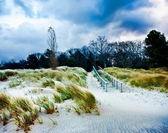 Michigan Photography, Michigan Art,DuneGrassBeach Photography,Beach Print,Saugatuck Michigan,Oval Beach,Saugatuck,Beach Wall Decor, Dune Art