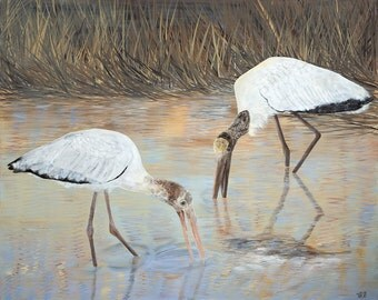 Wood Storks, Giclee Print, Wall Decor