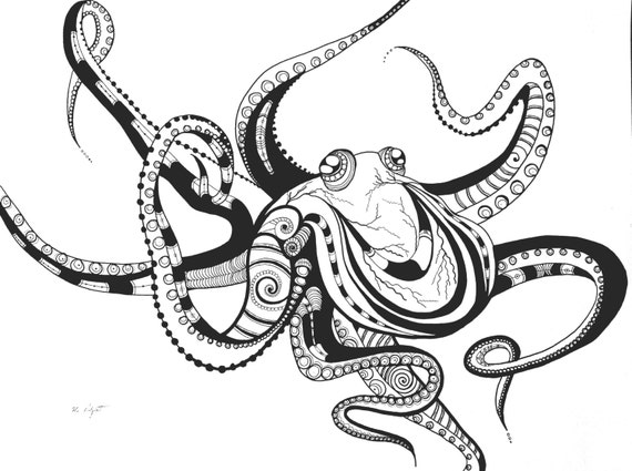 Octopus Drawing  Black...